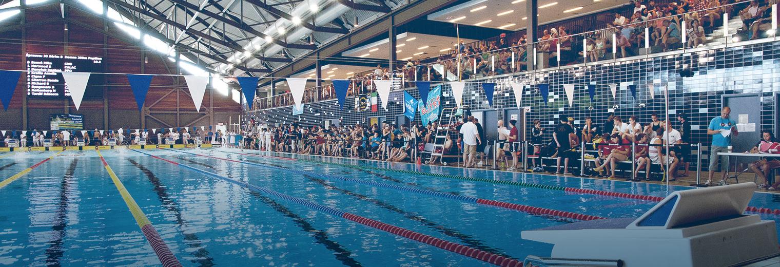 Le club de natation de pointe claire collecte 5 000 en for Club piscine pointe claire