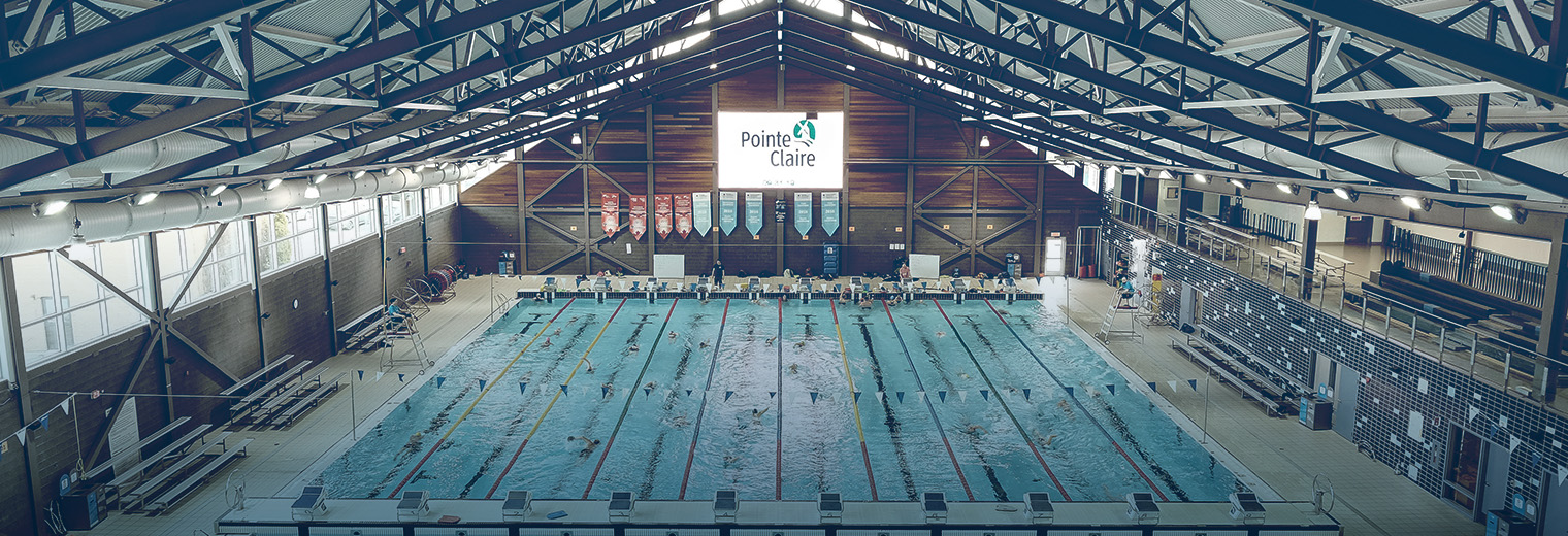 pointe claire swim club athletes win 182 medals ville de